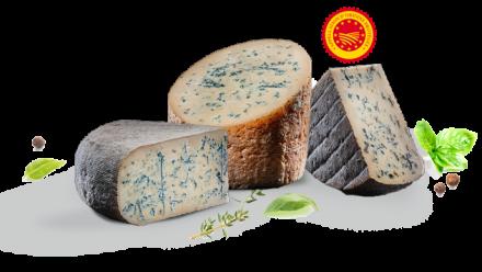 Bactéries-fromage-lait